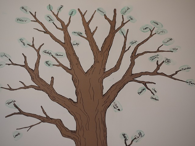 family tree - ancestry coupon codes